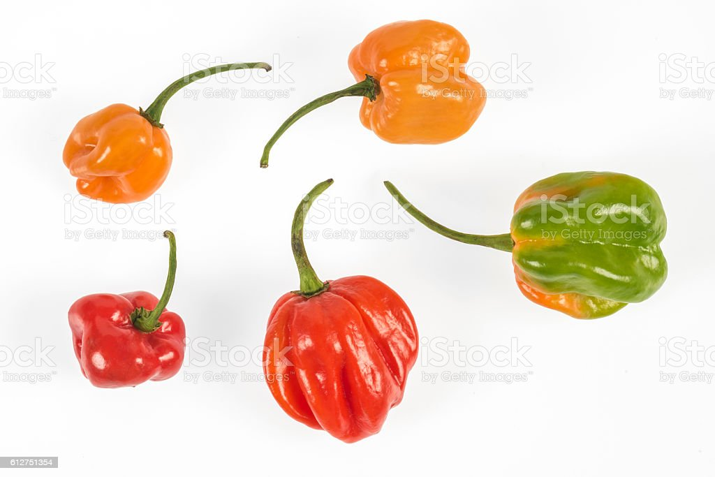 Very hot Habanero chilies from Mexico stock photo