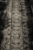 Very Old Train Tracks, Upper View