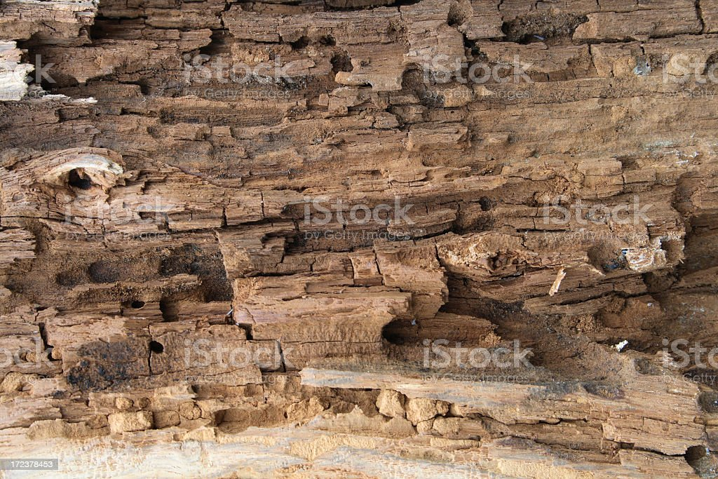 Very old wood texture. royalty-free stock photo