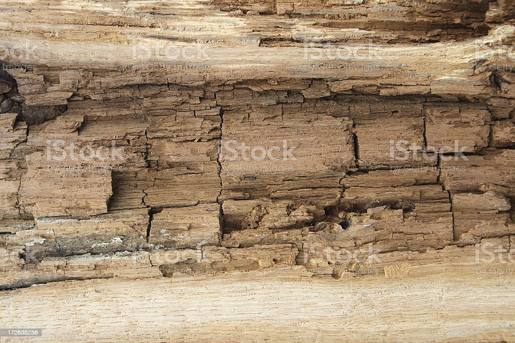 Very old wood texture. stock photo