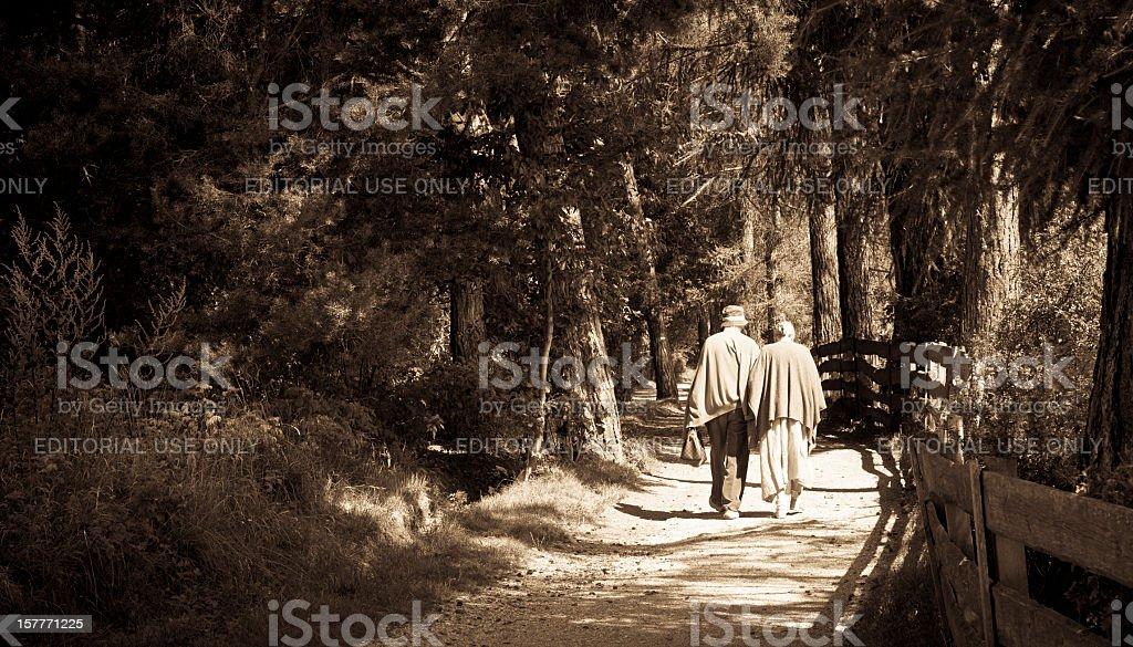 Very romantic scene stock photo