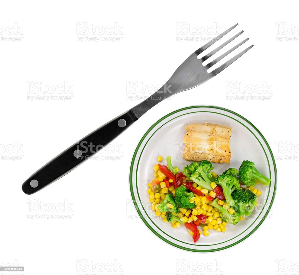 Very small plate of food with large fork stock photo