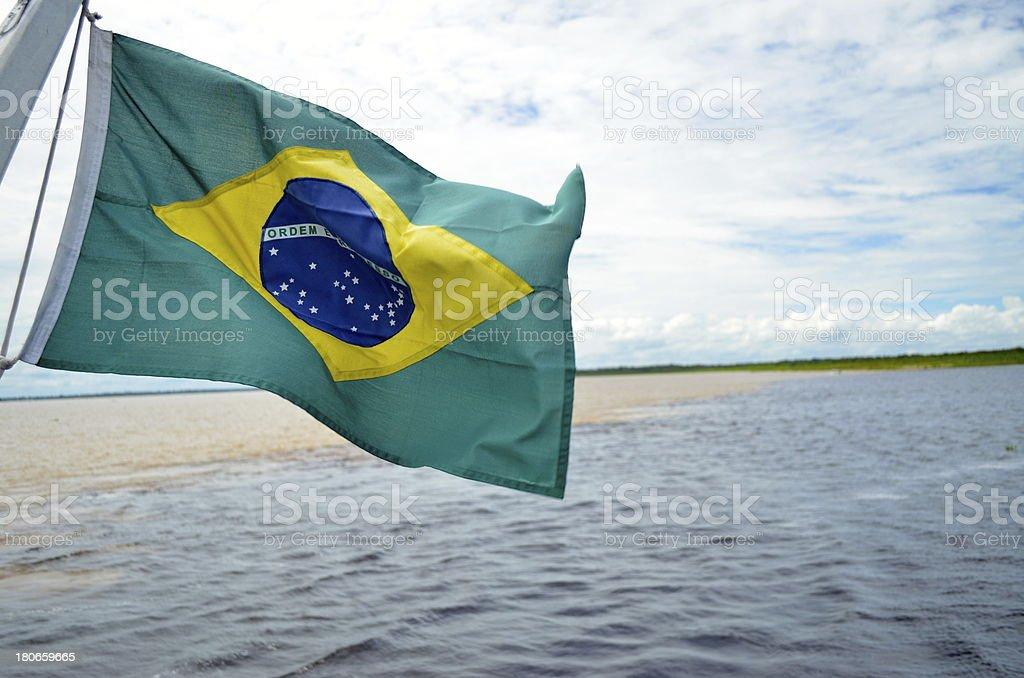 Besondere Phänomen in Brasilien Amazonas-Regenwald Lizenzfreies stock-foto