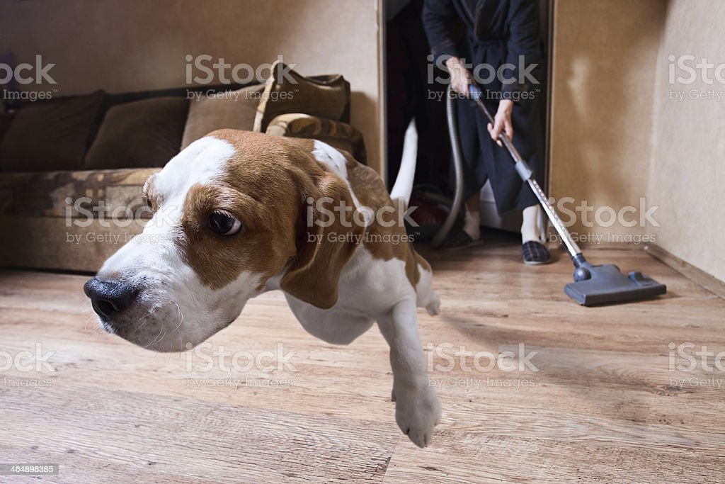 Very terrible vacuum cleaner stock photo