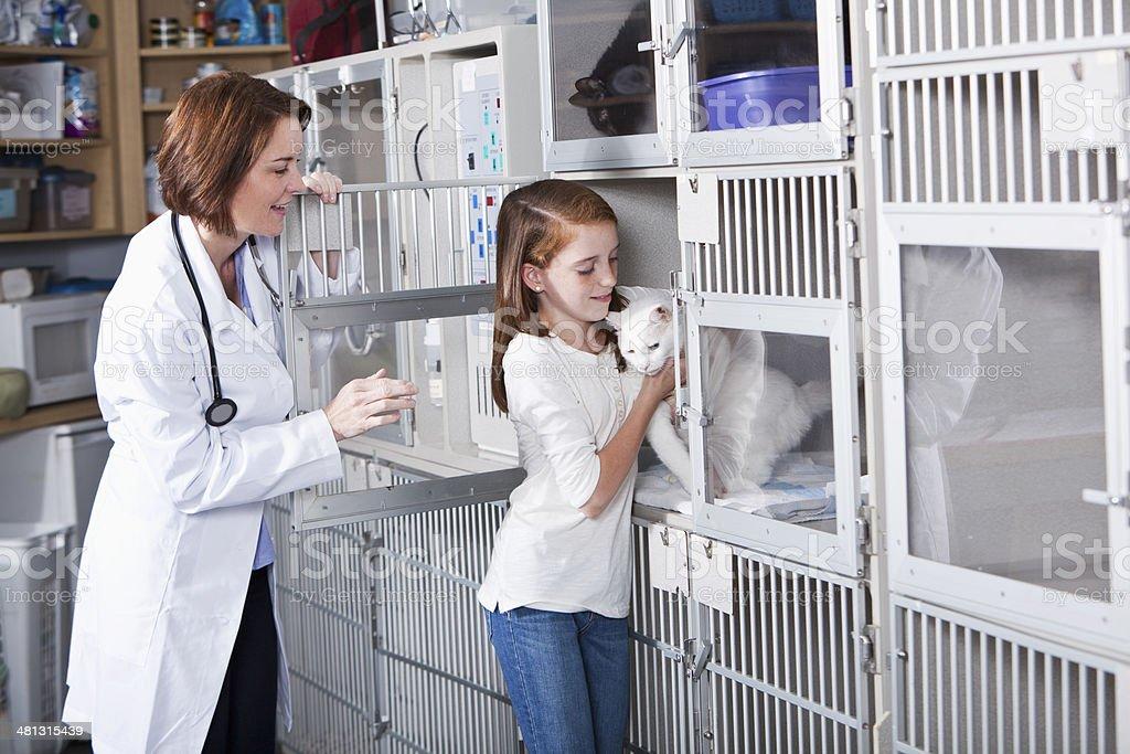 Vet clinic stock photo