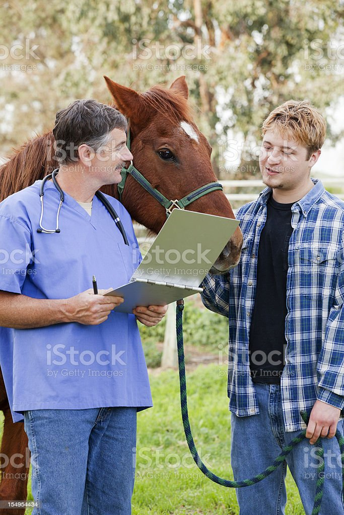Vet discussing treatment with horse owner royalty-free stock photo