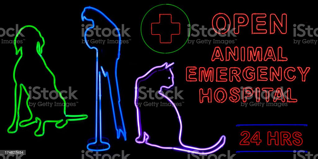 Vet neon signs royalty-free stock photo