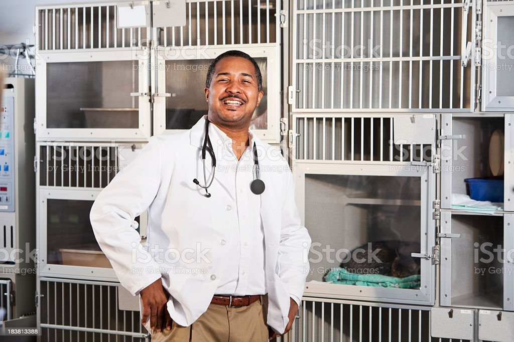 Vet with pets in animal clinic stock photo