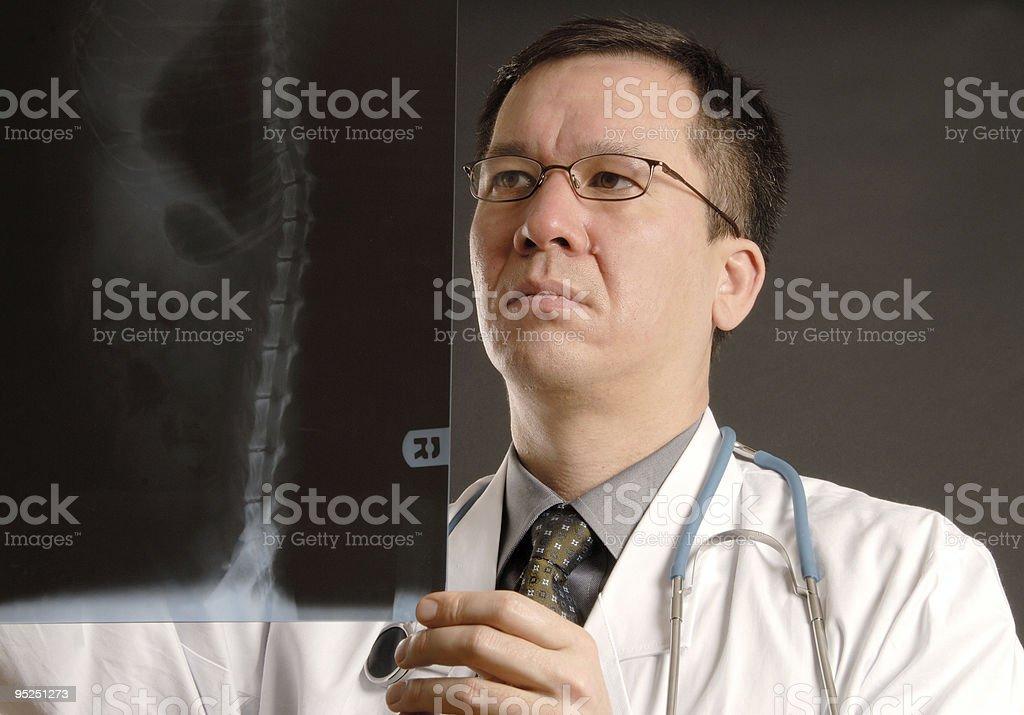 Vet with  X-Ray royalty-free stock photo