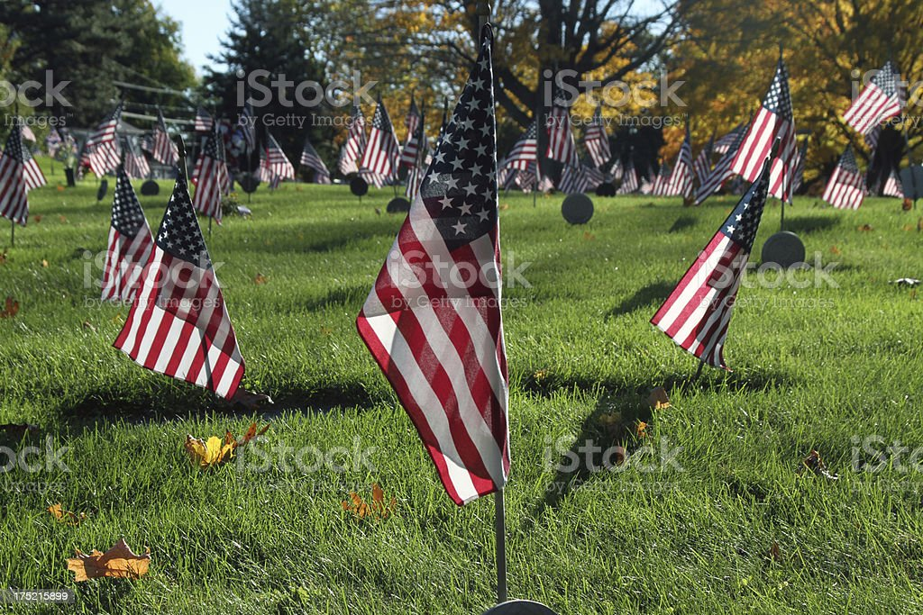 Veteran Flags in cemetery - centered royalty-free stock photo