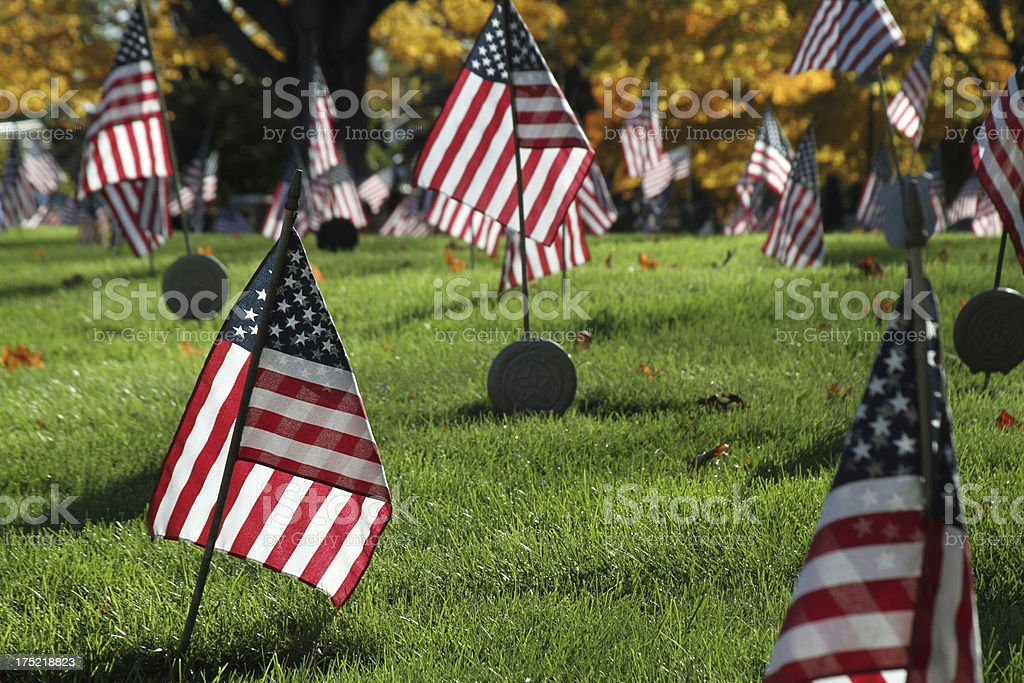Veteran Flags in cemetery - room for headline royalty-free stock photo