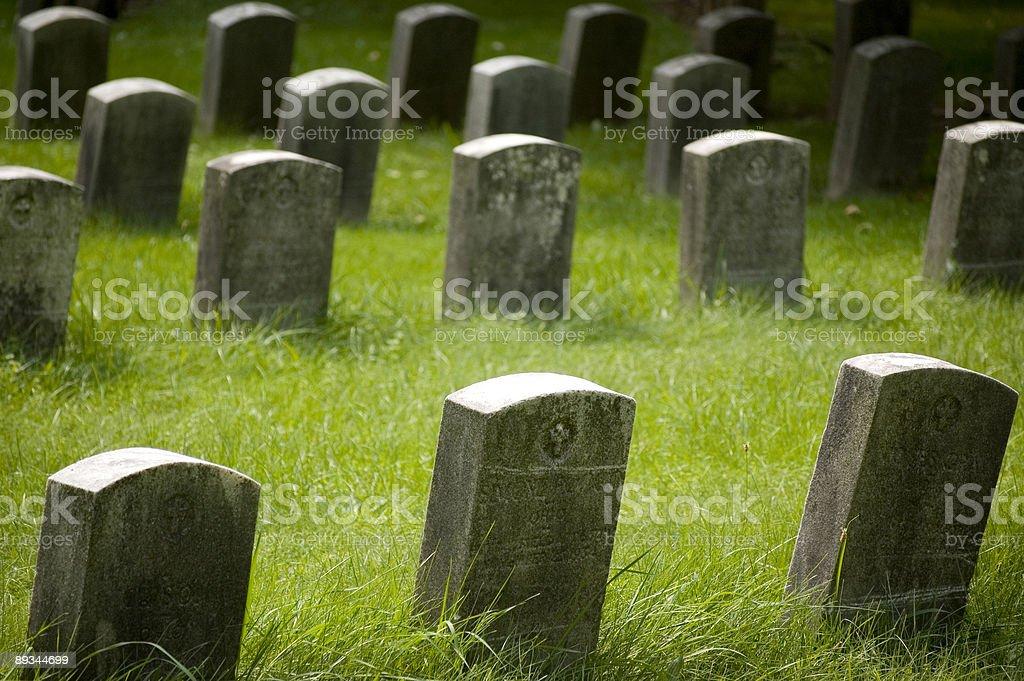 Veteran Stones II royalty-free stock photo