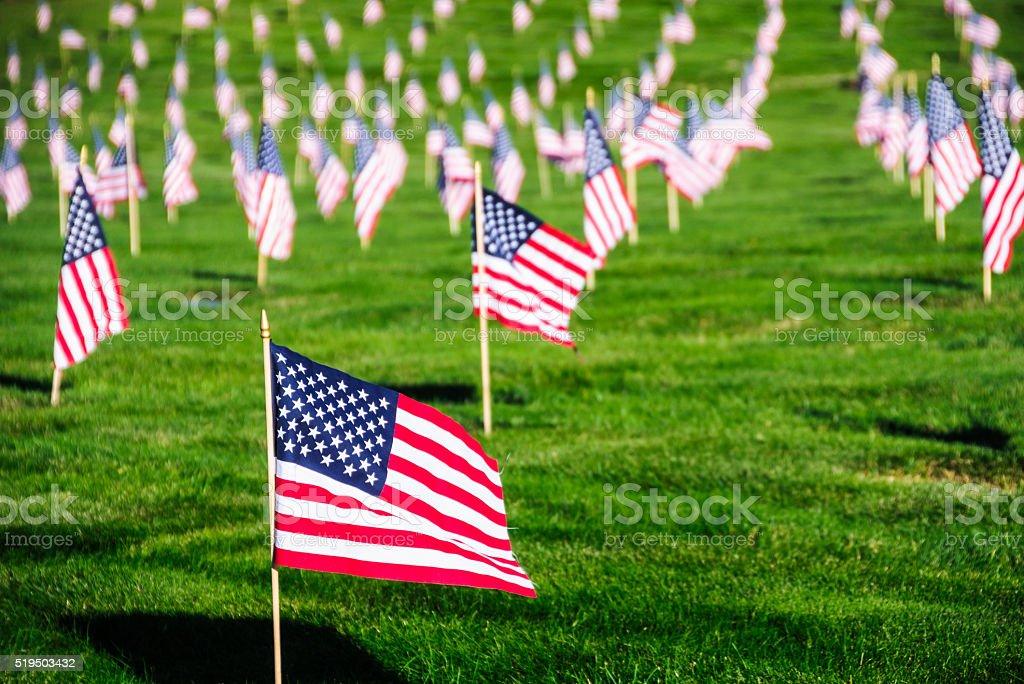 Veteran's Day Flags stock photo