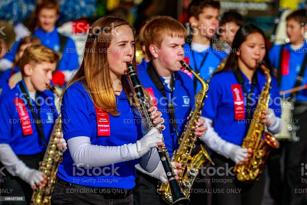 Veterans Day Parade 2015 stock photo