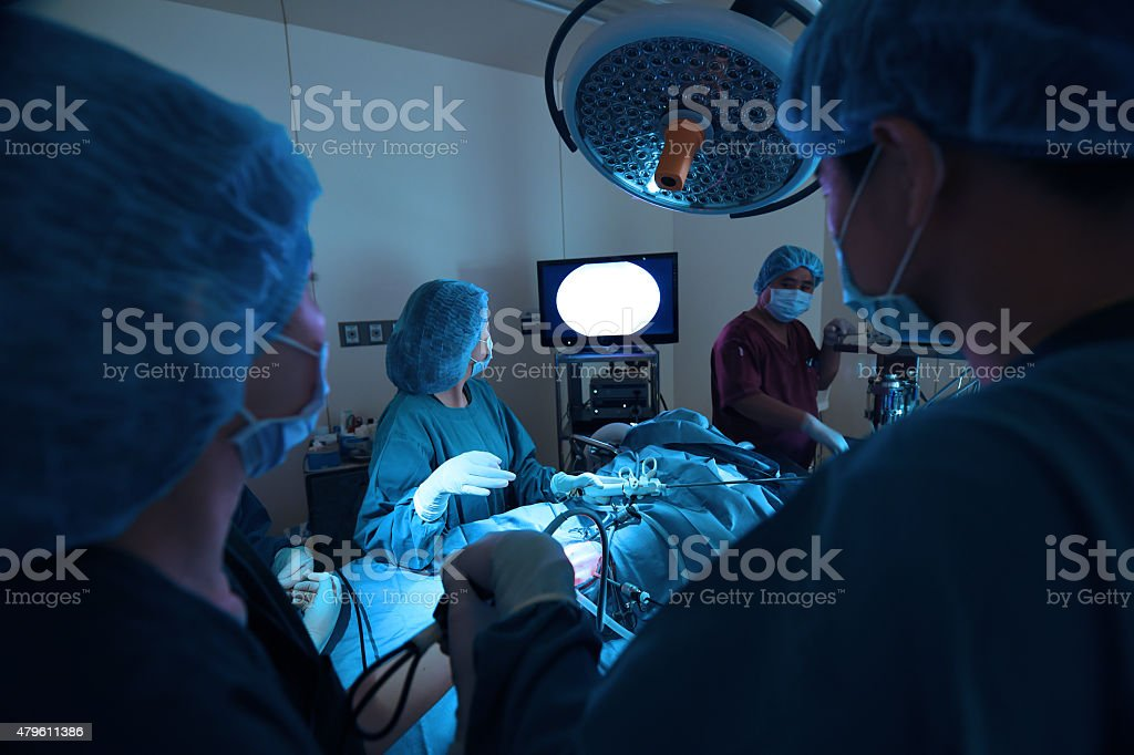 veterinarian doctor in operation room for laparoscopic surgical stock photo