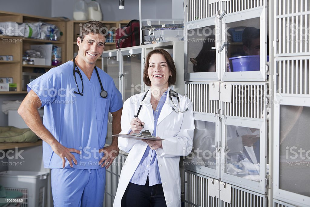 Veterinarians in animal hospital stock photo
