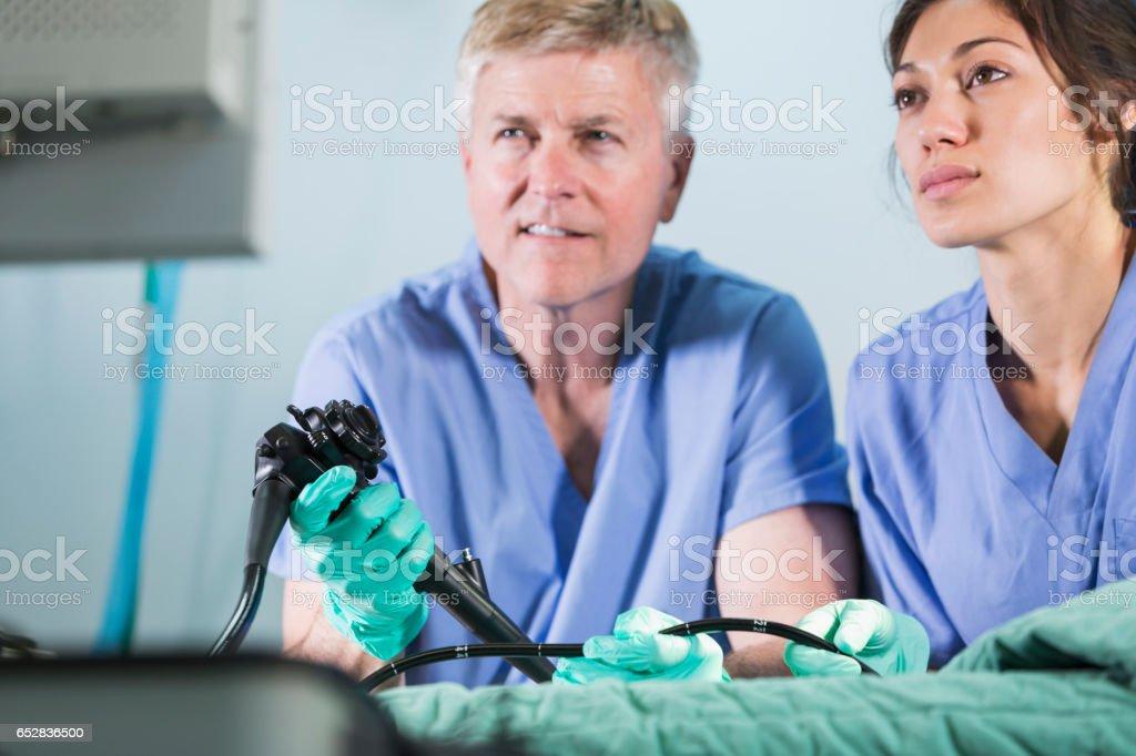 Veterinarians using an endoscope stock photo
