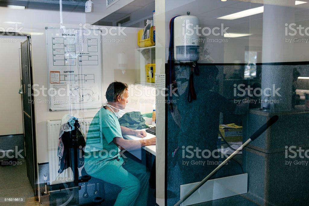 Veterinary Surgeon working on computer stock photo