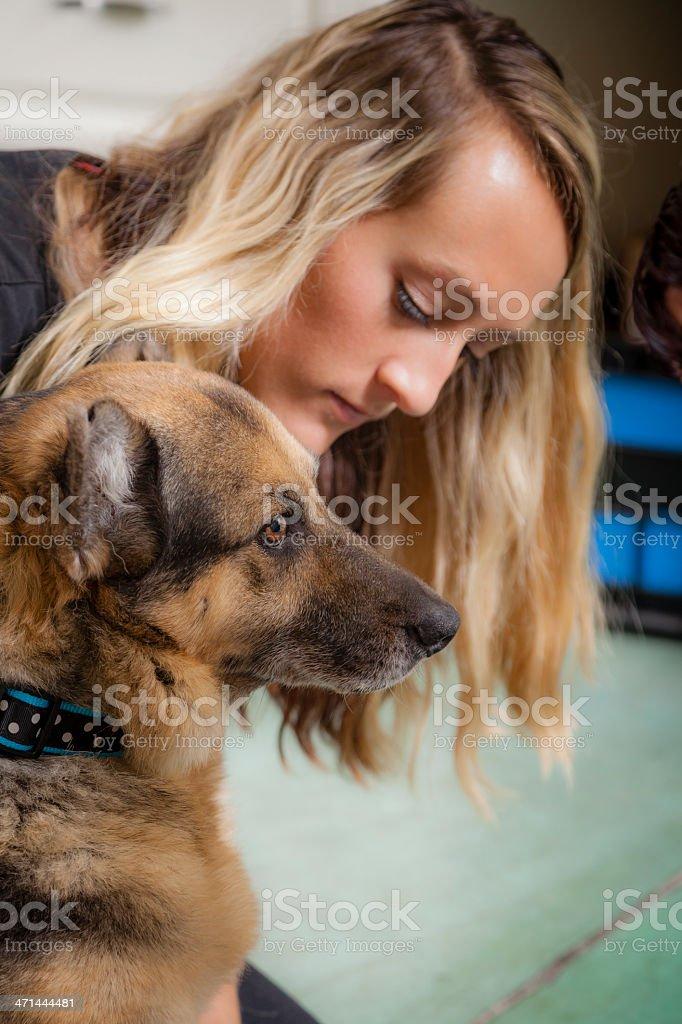 Veterinary Technician Comforts German Shepard in Animal Hospital royalty-free stock photo
