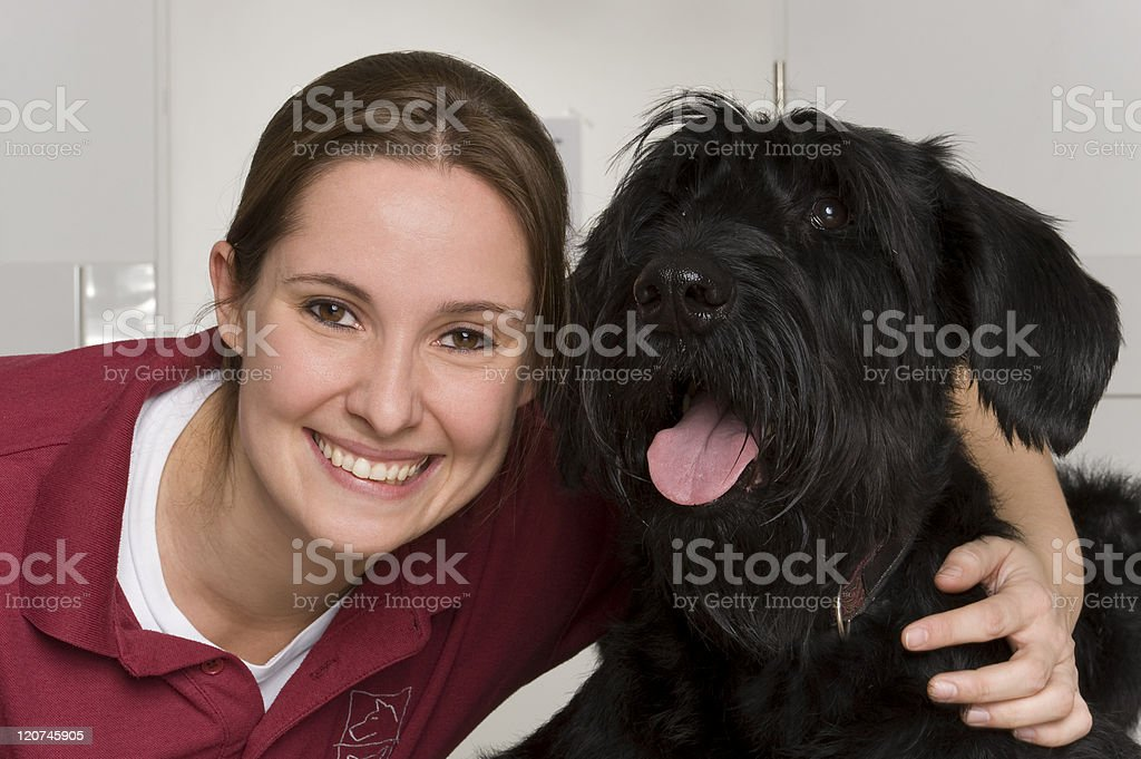 Veterinray stock photo