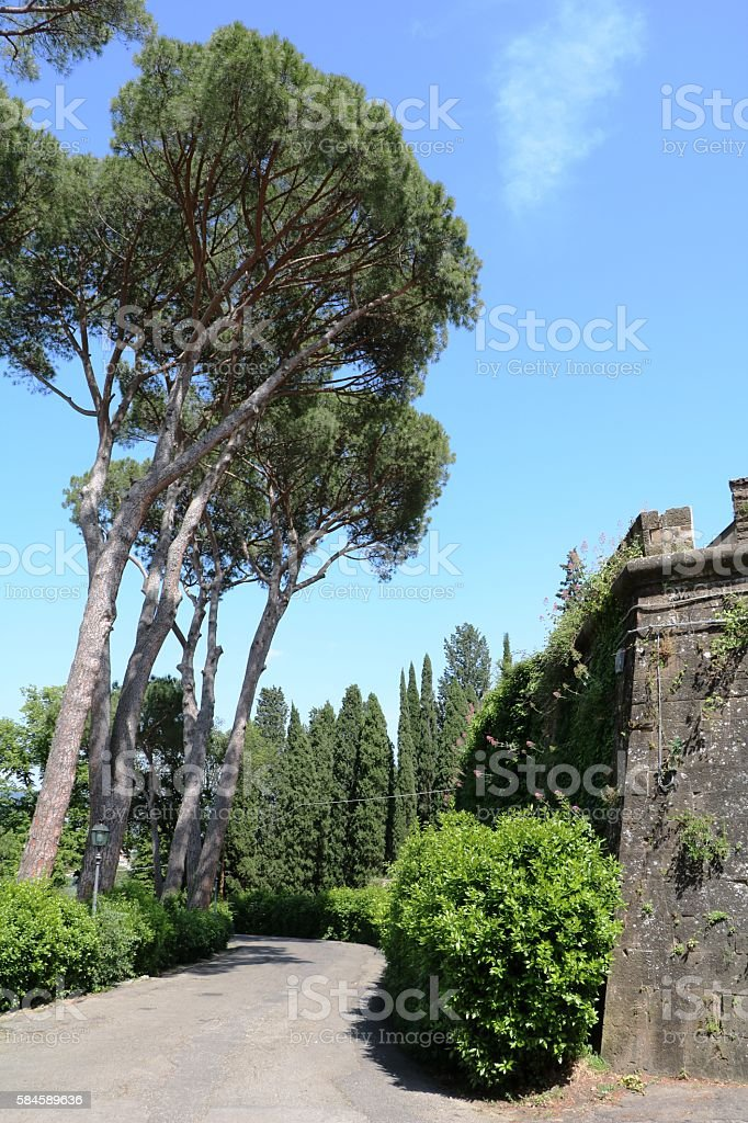 Via delle Porte Sante in Florence, Italy stock photo