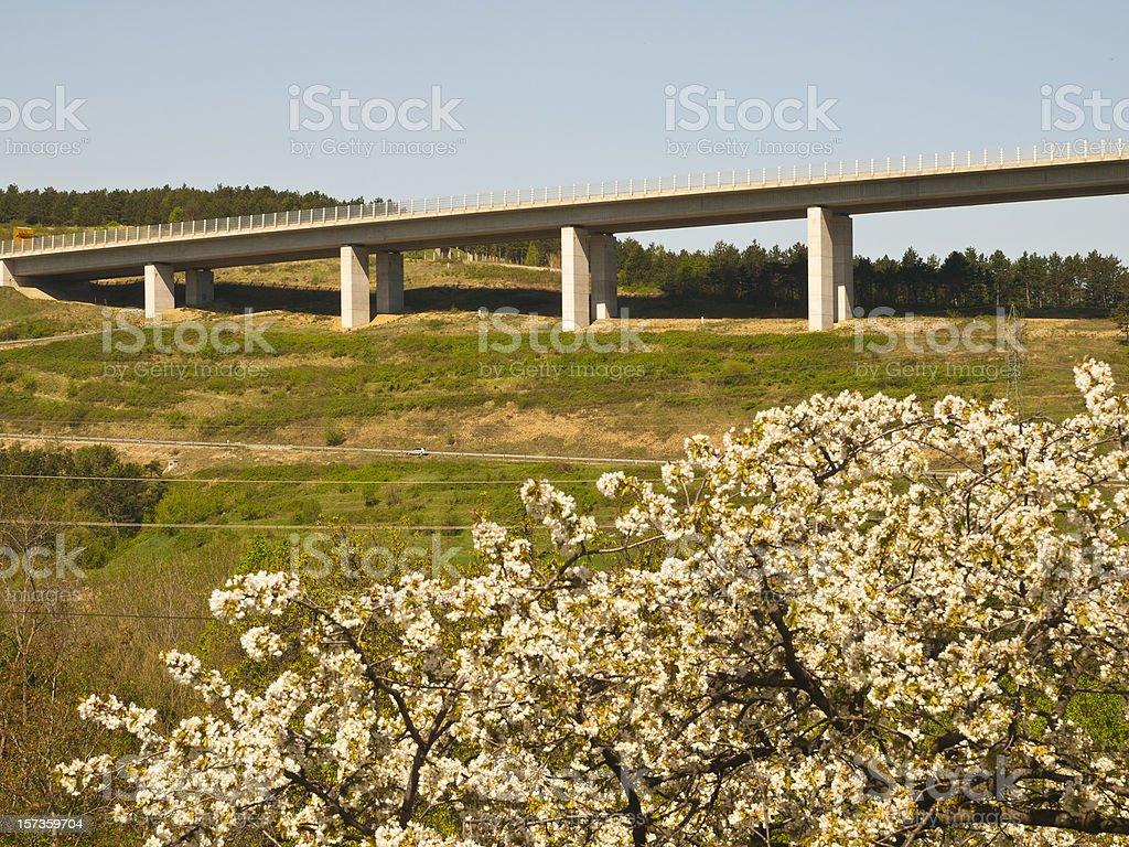 Viaduct bridge over nature royalty-free stock photo