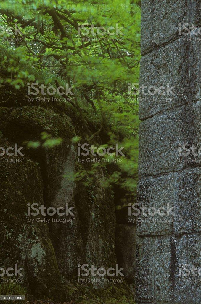 Viaduct Luxulyan Valley stock photo