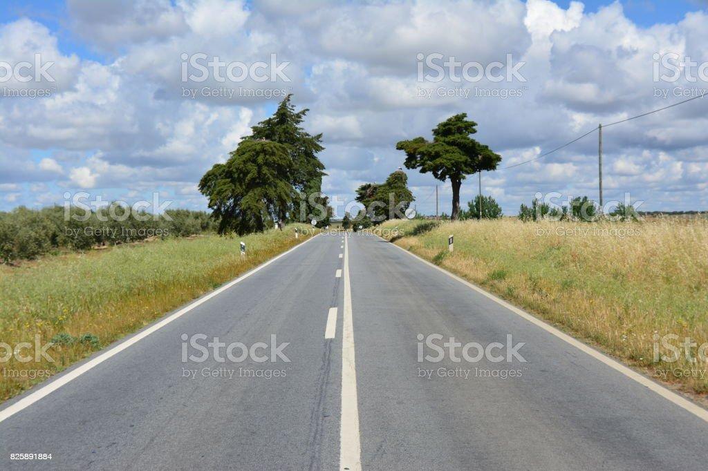Viajar pela estrada a fora stock photo