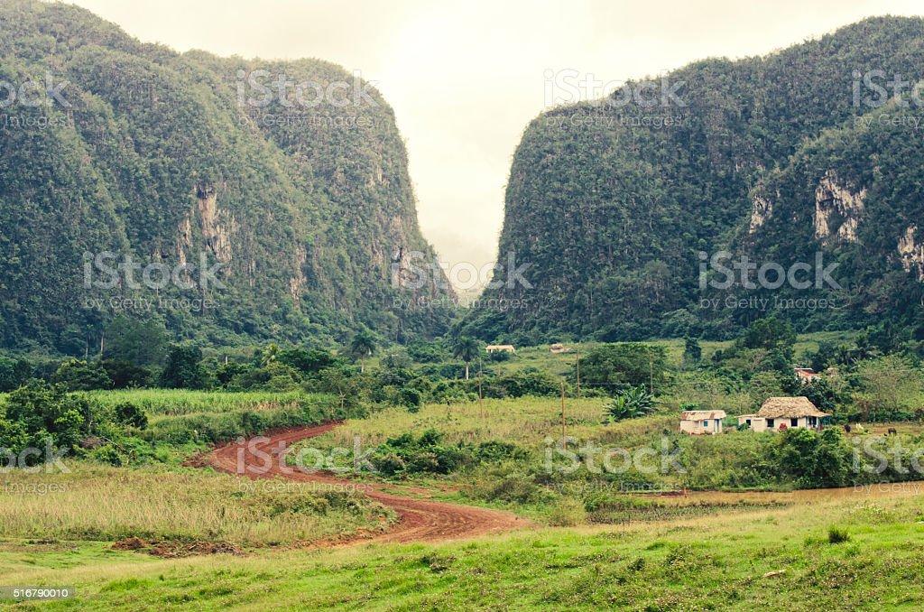 Viñales Valley, Pinar del Rio, Cuba stock photo