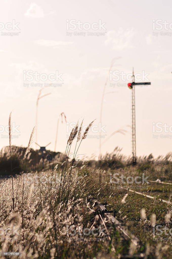 Vias de tren en un atardecer soleado stock photo