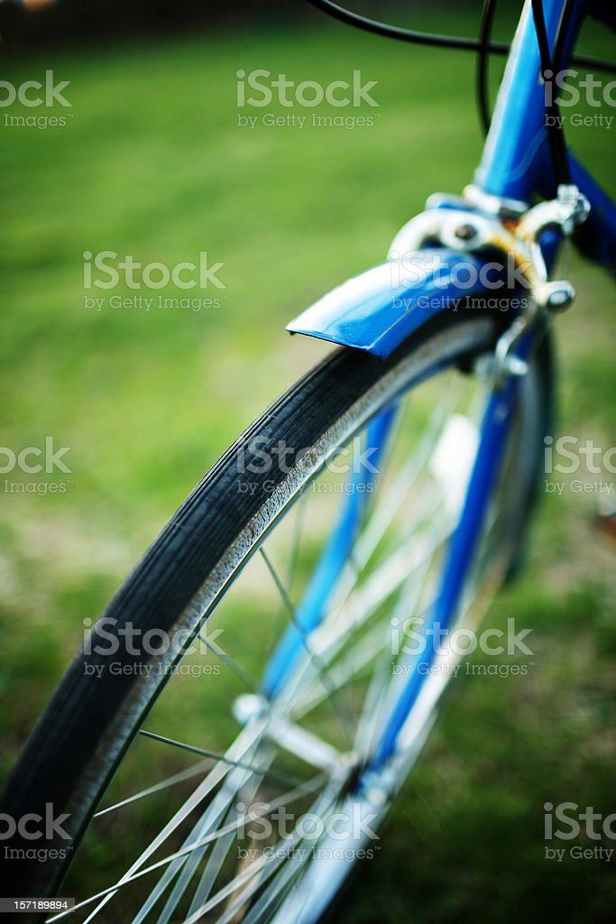 Vibrant Blue Bike Against Lush Green Grass royalty-free stock photo
