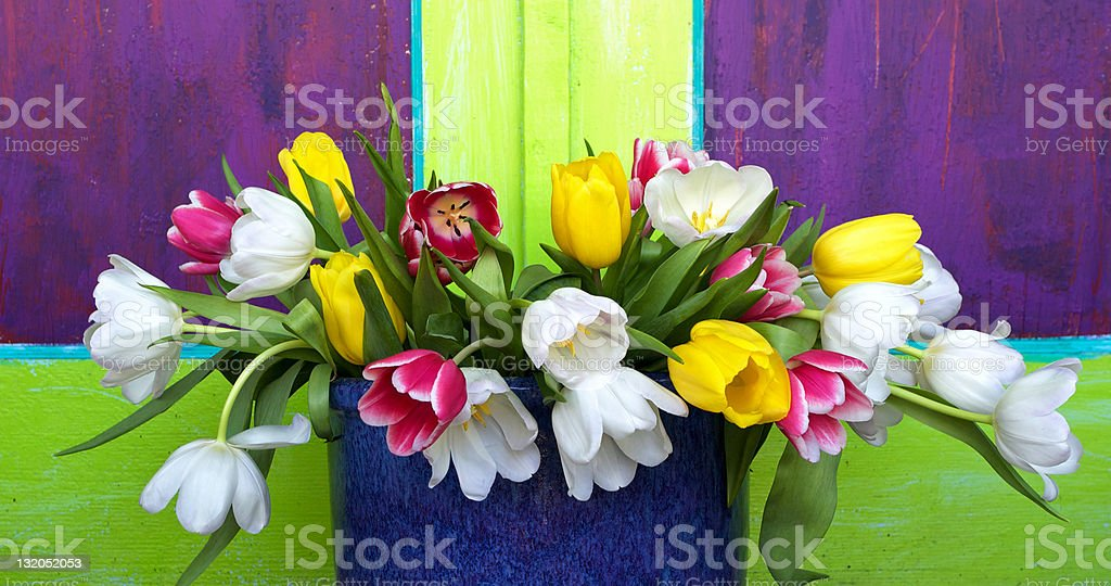 Vibrant Bouqet of Tulips royalty-free stock photo