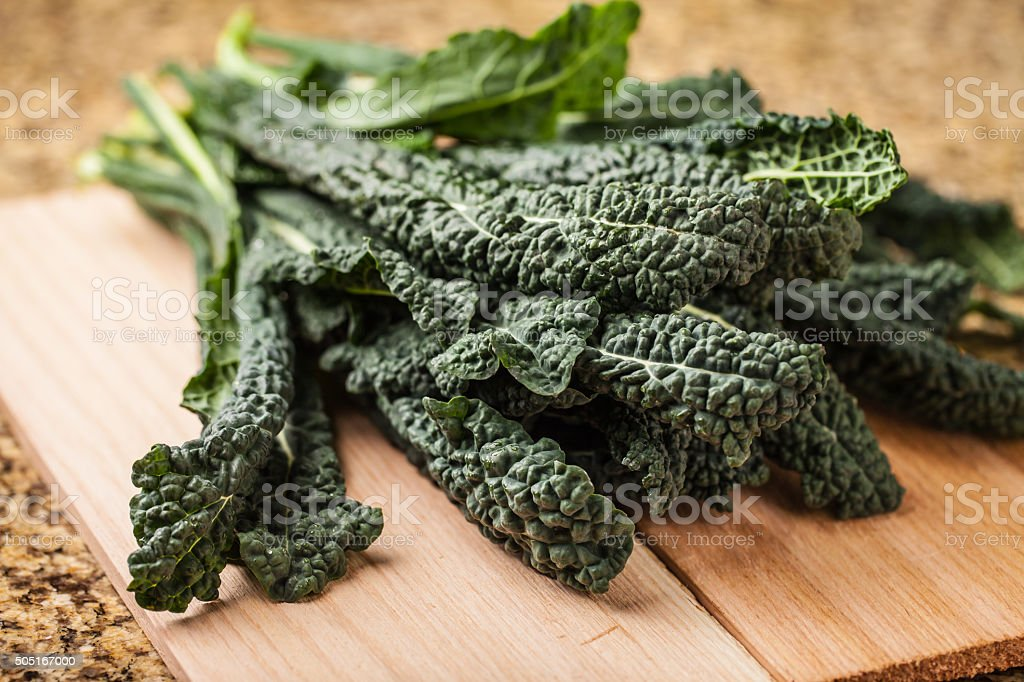 Vibrant bunch of freshly harvested lacinato kale stock photo