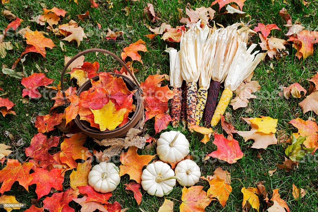 Vibrant Colors of Autumn stock photo