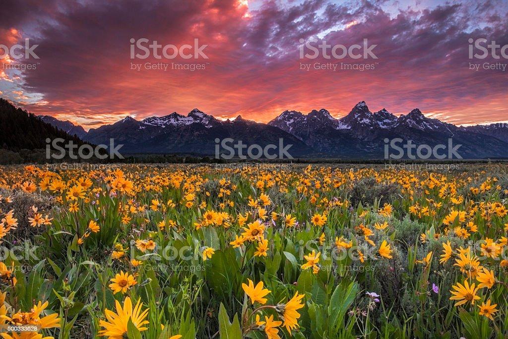 Vibrant Mountain Sky stock photo