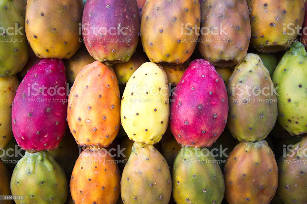 Vibrant Multi-Colored Prickly Pears Lined Up (Close-Up, Full Frame) stock photo
