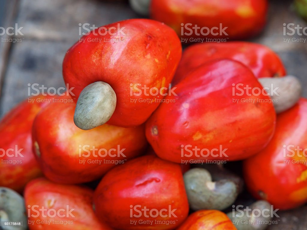 Vibrant red cashew nut fruit stock photo