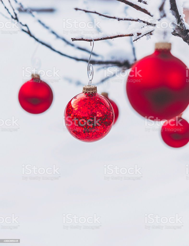 Vibrant red Christmas baubles hanging on snow covered tree outdoors stock photo