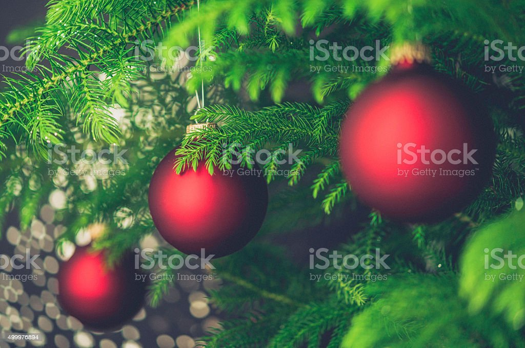 Vibrant red Christmas baubles on Christmas tree branches stock photo