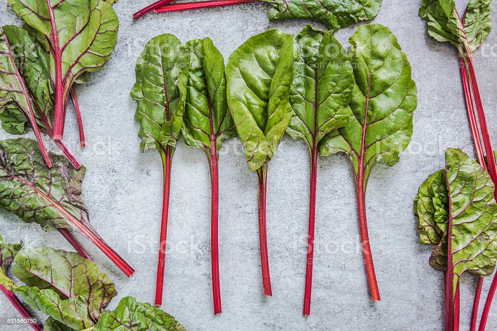 Vibrant red steams of spring chard stock photo