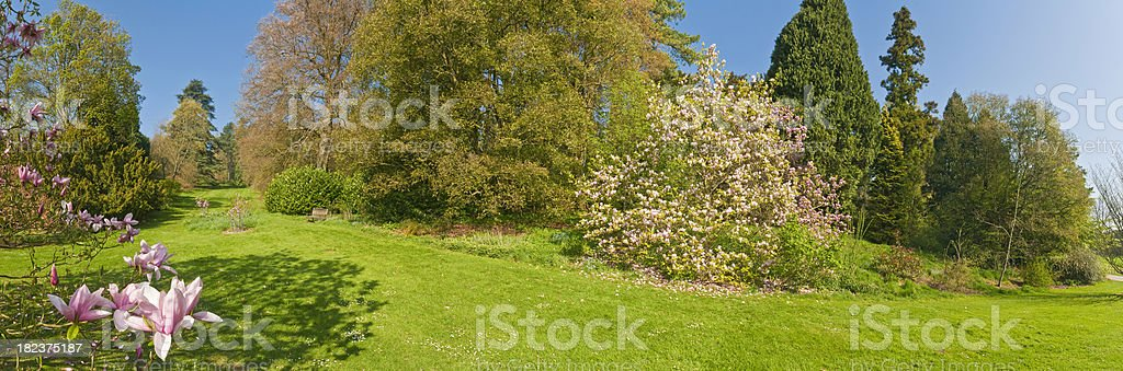 Vibrant spring gardens lush green foliage idyllic pink blossoms panorama royalty-free stock photo
