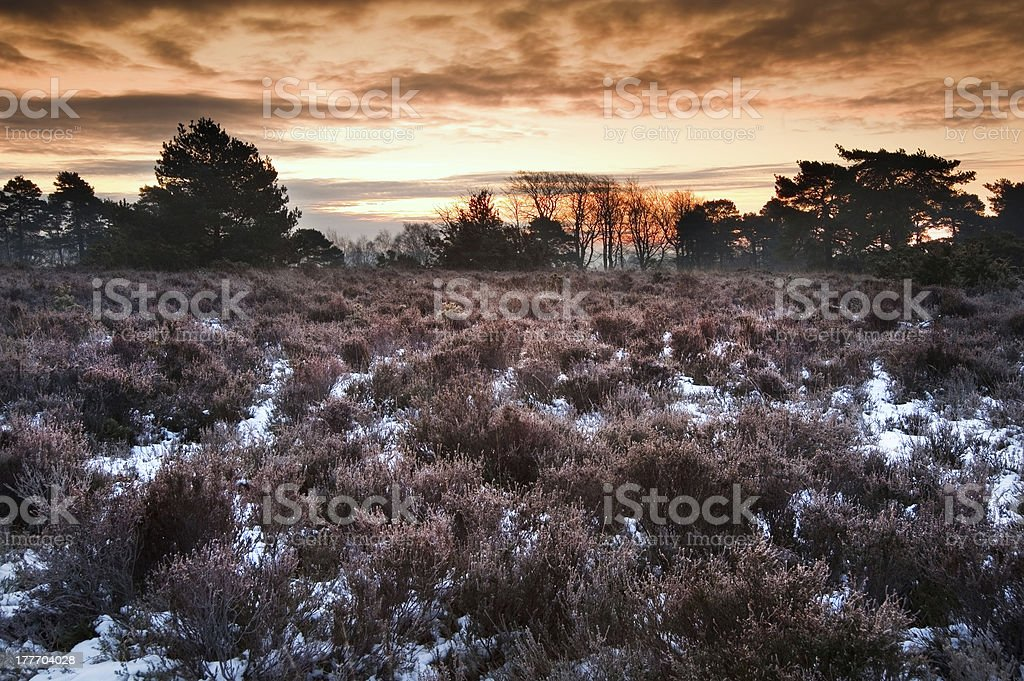 Vibrant Winter sunrise landscape over snow covered countryside royalty-free stock photo