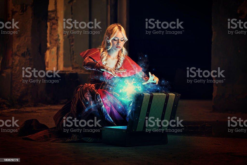 Vicious suitcase royalty-free stock photo