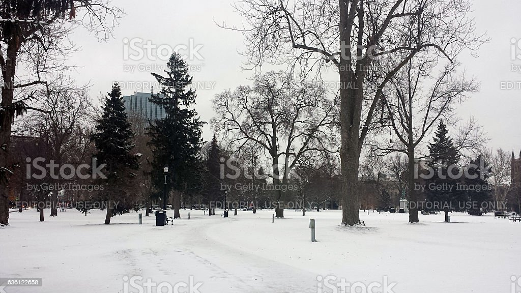 Victoria Park snow-covered during wintertime stock photo