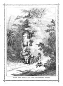 Victorian illustration young child playing hide and seek behind hedge