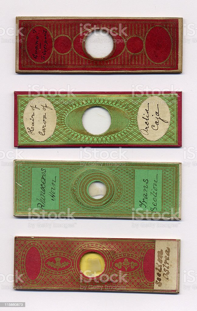 Victorian paper covered slides royalty-free stock photo