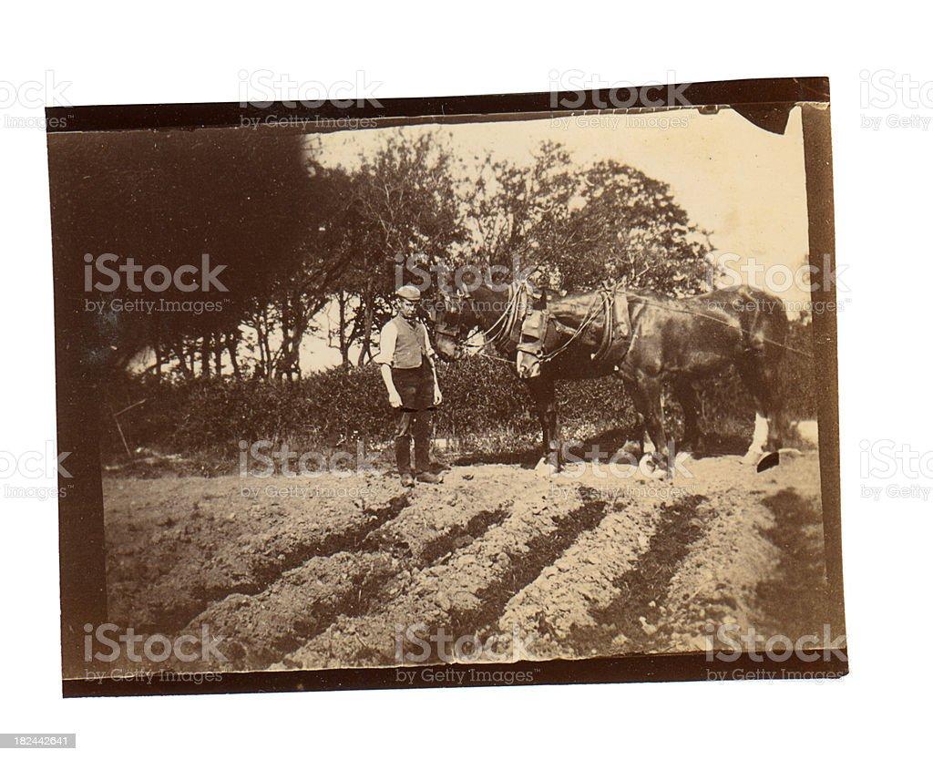 Victorian Ploughman - Old Photograph stock photo