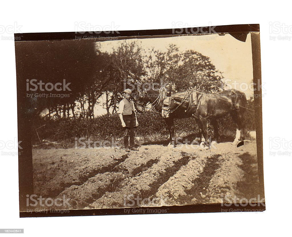 Victorian Ploughman - Old Photograph stock photo