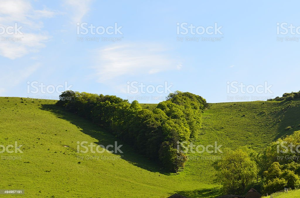 Victoria's Jubilee V South Downs. stock photo