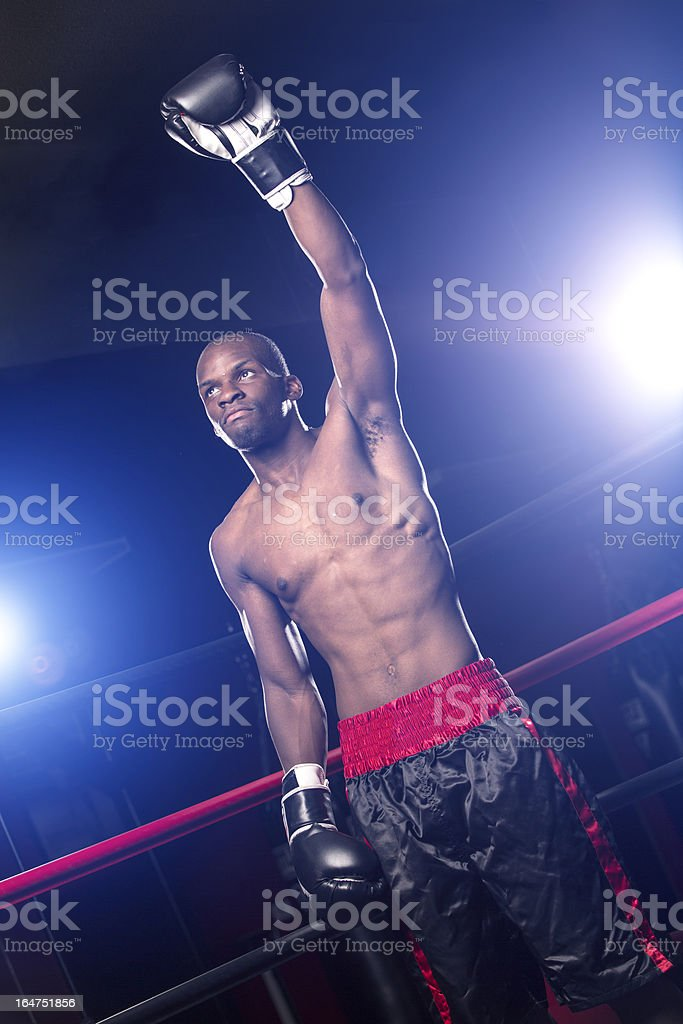 Victorious Boxer after a fight royalty-free stock photo